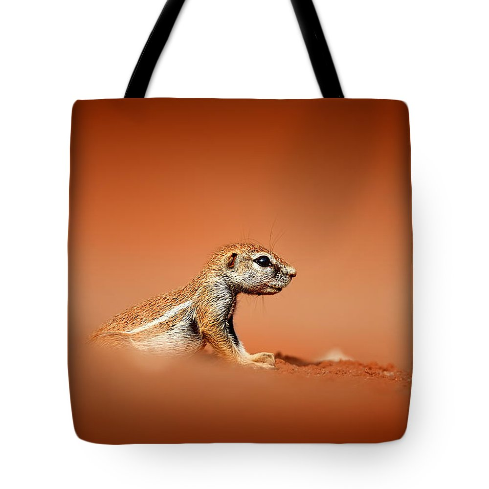 Squirrel Tote Bag featuring the photograph Ground Squirrel On Red Desert Sand by Johan Swanepoel