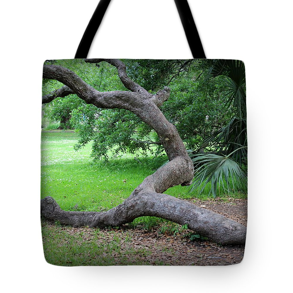 Grounded Tote Bag featuring the photograph Grounded by Beth Vincent