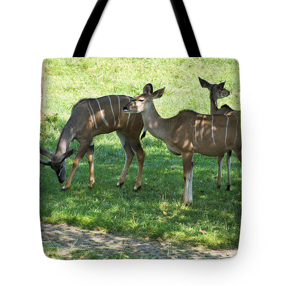 Antelope Tote Bag featuring the digital art group of Kudu Antelope by Chris Flees