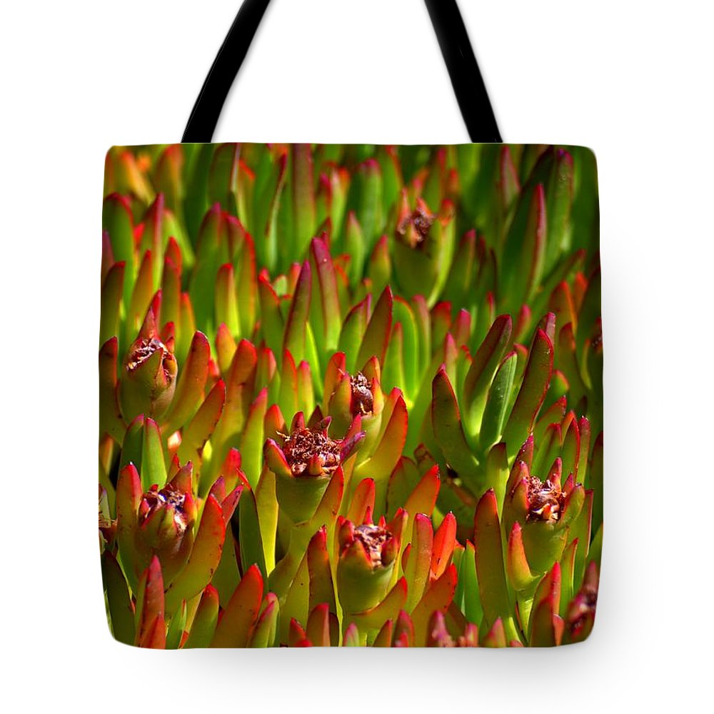 Groupies Tote Bag featuring the photograph Groupies by Ed Smith