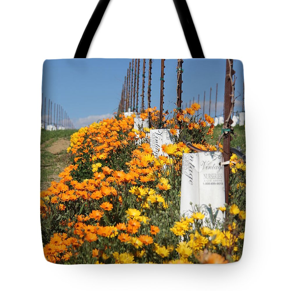Wine Tote Bag featuring the photograph Growing Vino by Diane Greco-Lesser