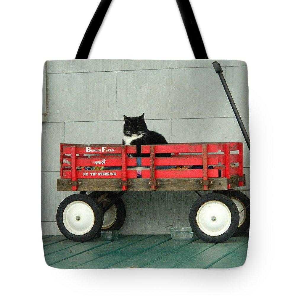 8743daf87137 Grumpy Puss In A Wagon Tote Bag