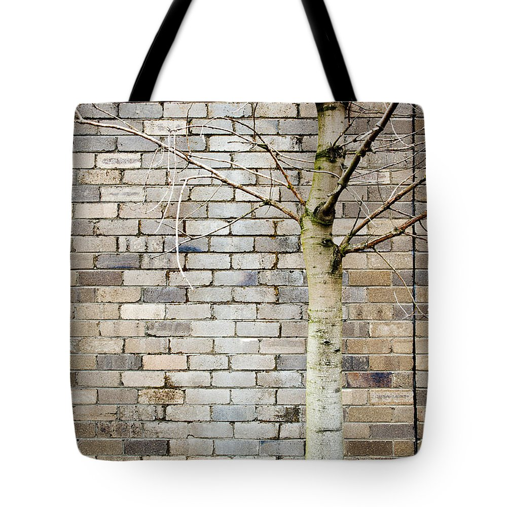 Aged Tote Bag featuring the photograph Grunge Background by Tim Hester