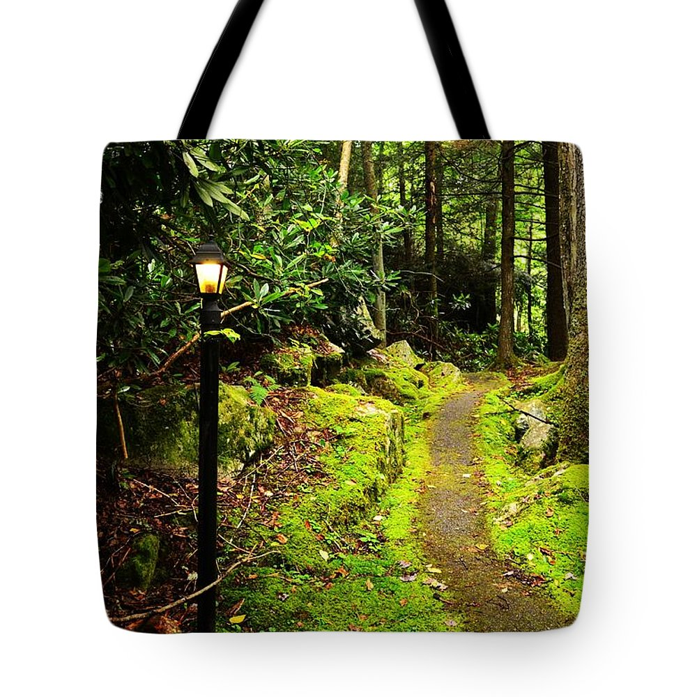 Paths Tote Bag featuring the photograph Guide My Path by Lj Lambert