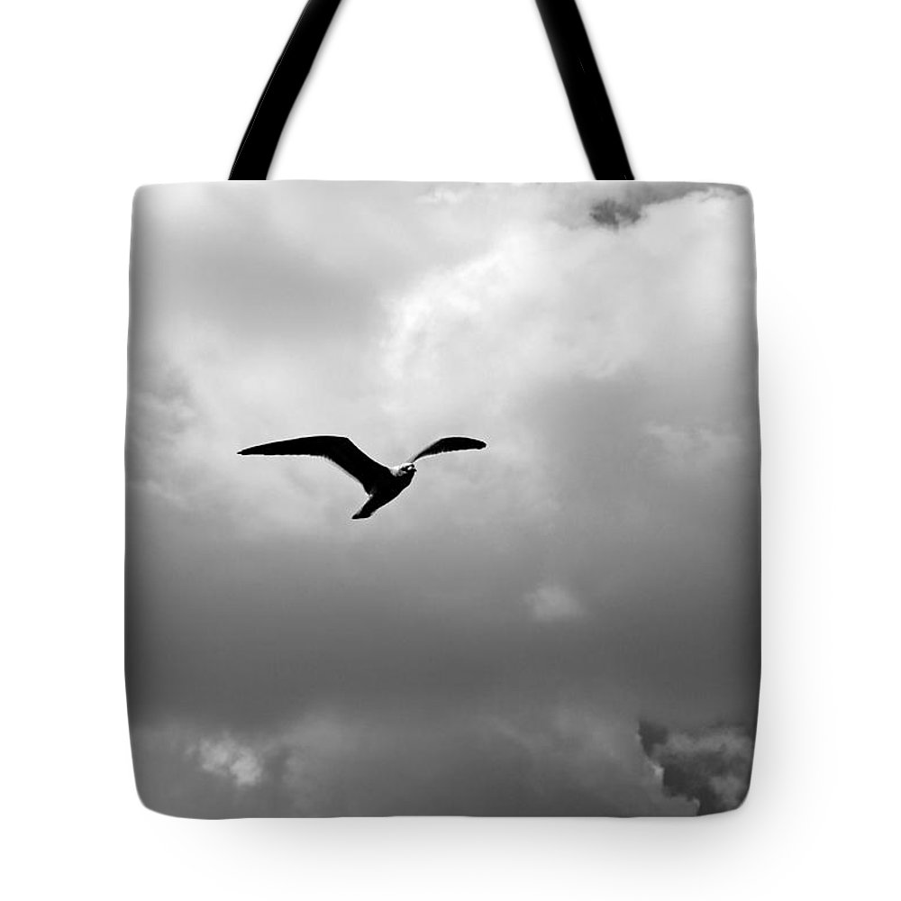 Landscapes Tote Bag featuring the photograph Gulls In Flight Mb039bw by Earl Johnson