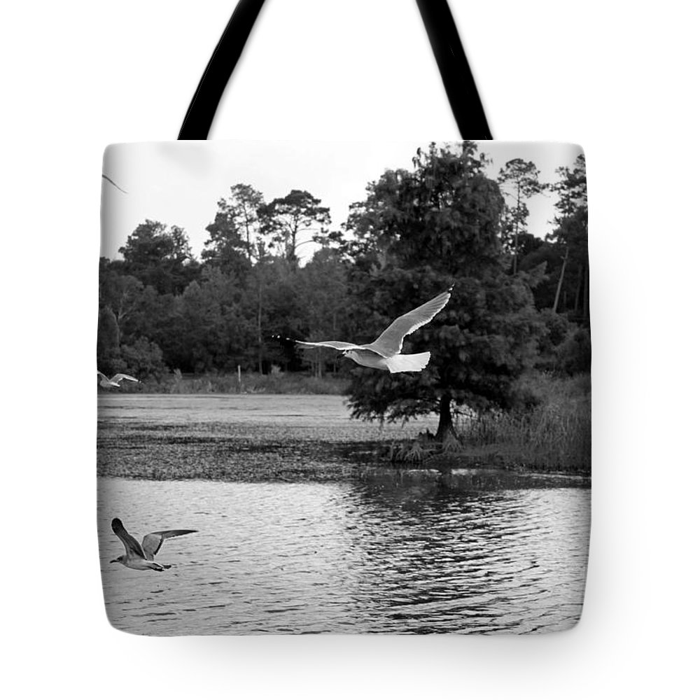 Seascape Tote Bag featuring the photograph Gulls In Flight Mb083bw by Earl Johnson