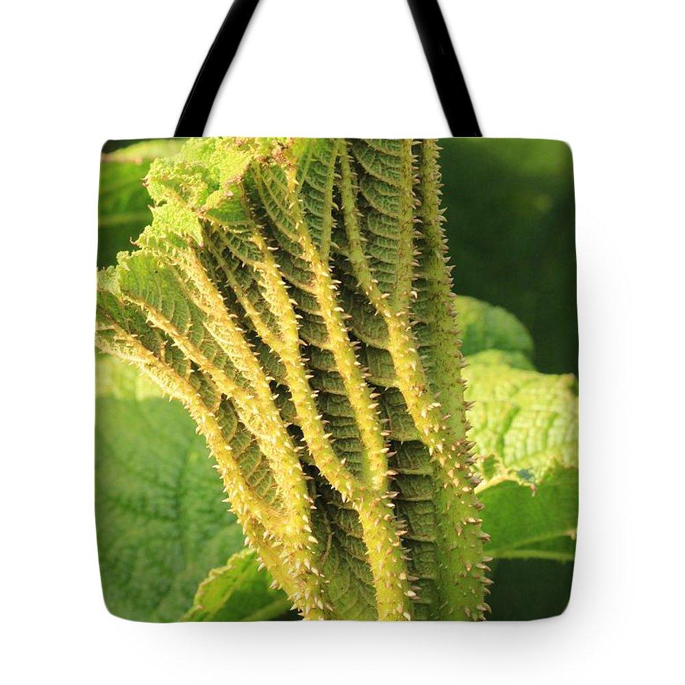 Gunnera Tote Bag featuring the photograph Gunnera Tinctoria by Robert Phelan
