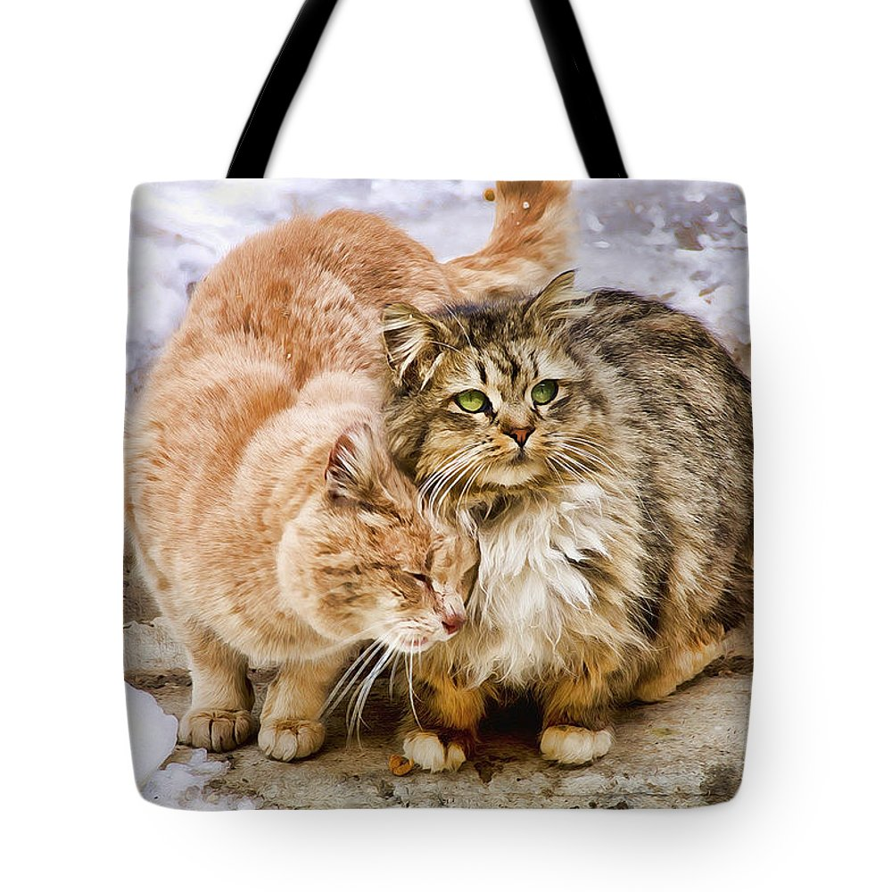 Cats Tote Bag featuring the photograph Gutter Kitties Five by Alice Gipson