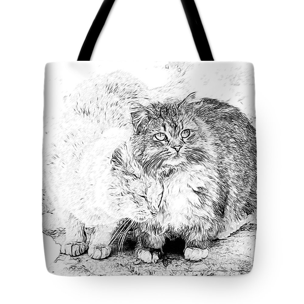 Cats Tote Bag featuring the photograph Gutter Kitties Seven by Alice Gipson