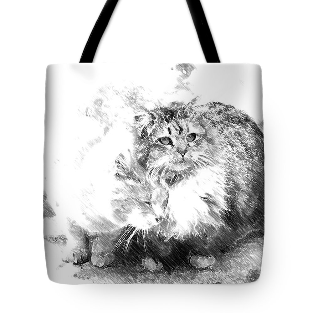 Cats Tote Bag featuring the photograph Gutter Kitties Six by Alice Gipson