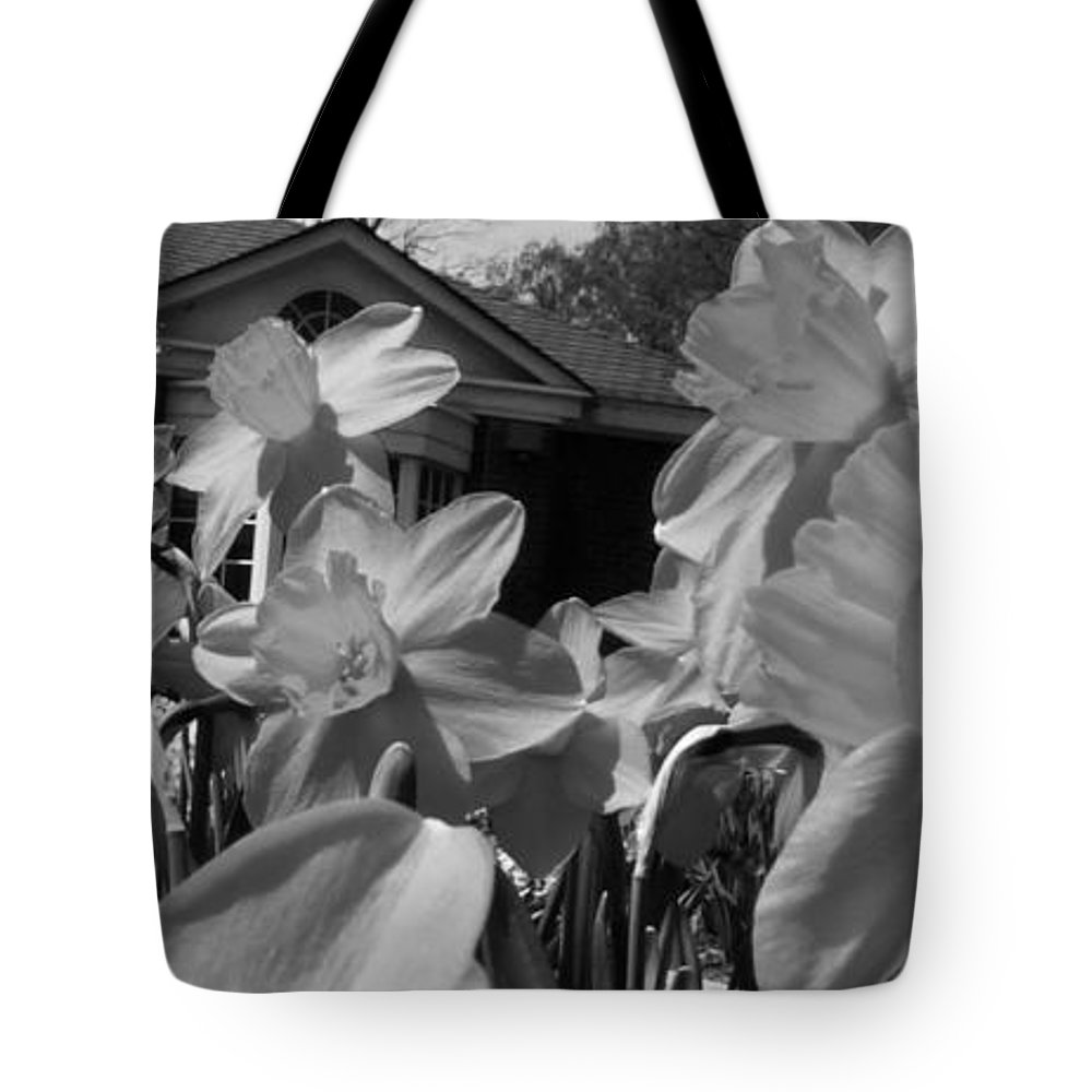 Black And White Tote Bag featuring the photograph H I Think Its This Way Bw by Dale Crum
