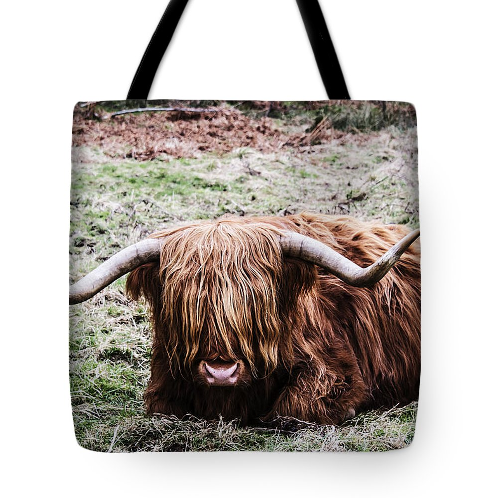Travel Tote Bag featuring the photograph Hairy Cow by Elvis Vaughn