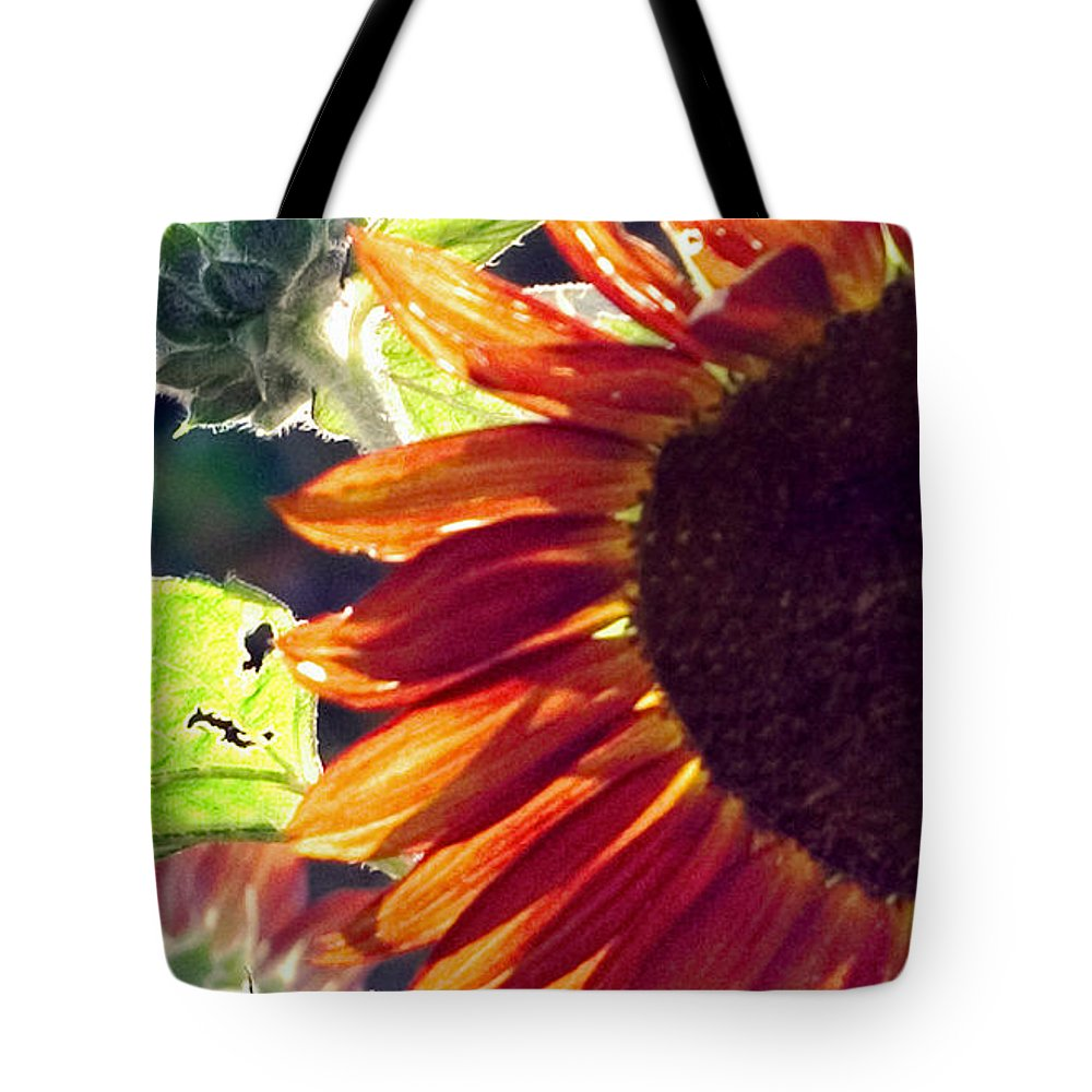 Sunflower Tote Bag featuring the photograph Half Of A Sunflower by Madeline Ellis