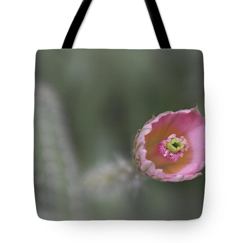 Cactus Tote Bag featuring the photograph Half Open by David and Carol Kelly