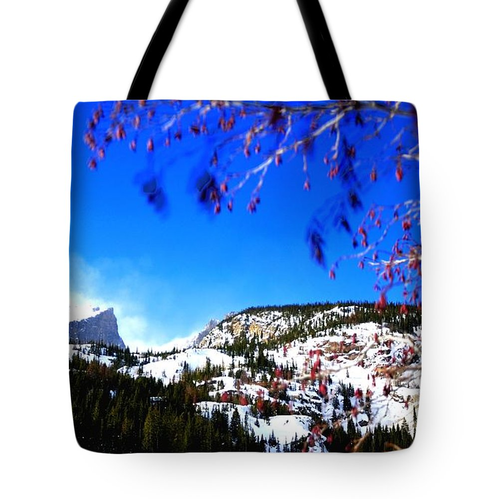 Landscape Tote Bag featuring the photograph Hallet Peak Colorado 4406 by Jerry Sodorff