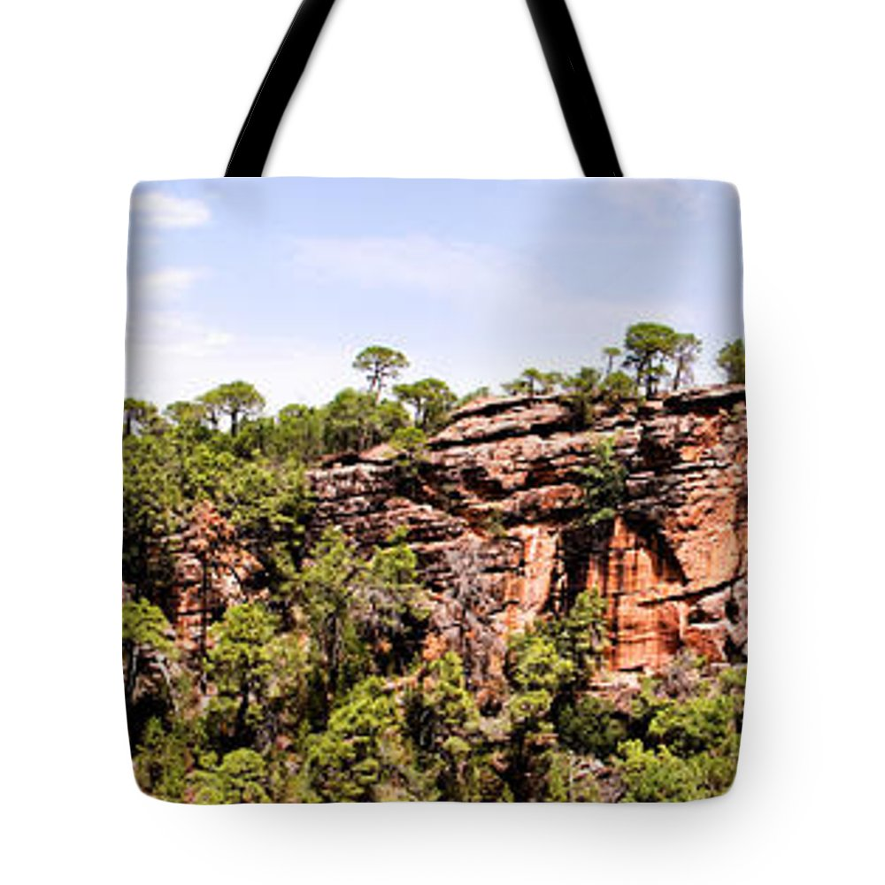 Hanging Forest Tote Bag featuring the photograph Hanging Forest by Weston Westmoreland
