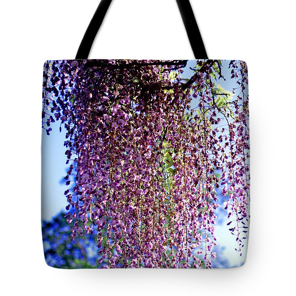 Atlantic Tote Bag featuring the photograph Hanging Garden by Pablo Rosales