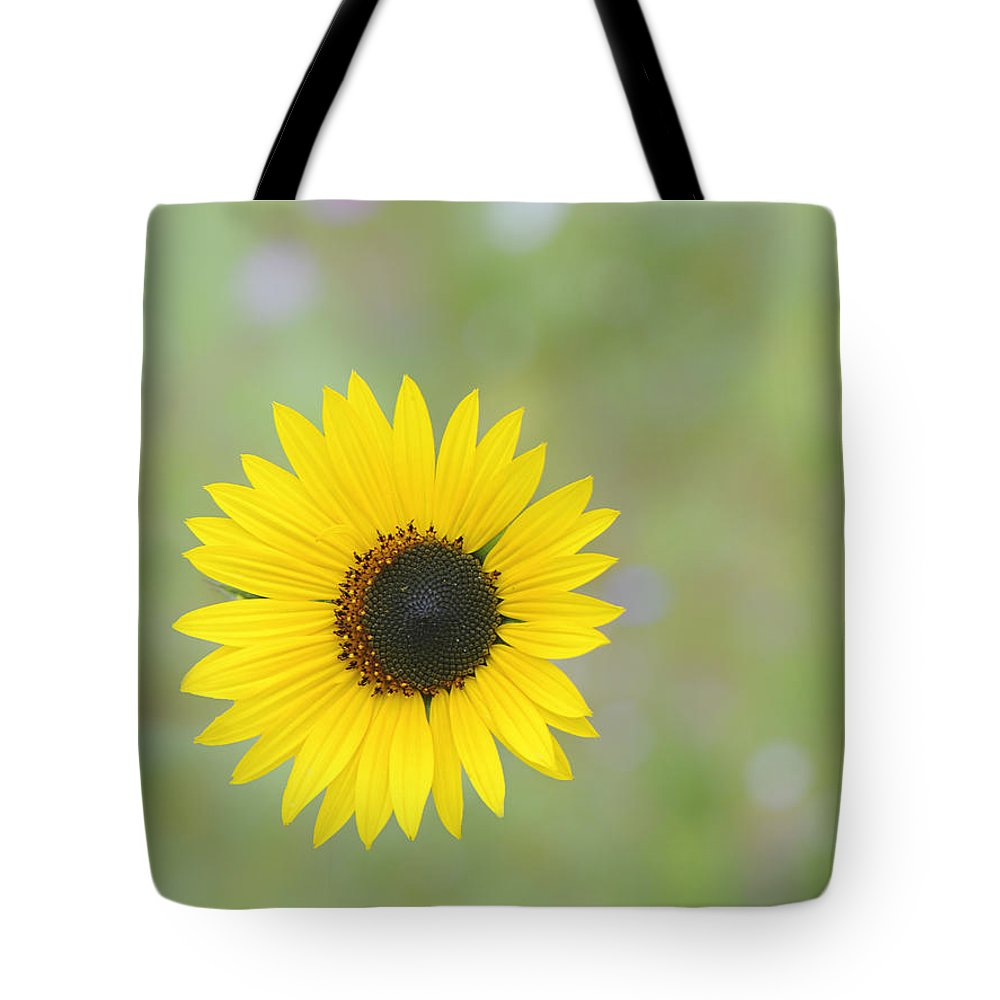 Flower Tote Bag featuring the photograph Hanging In There by Jean-Pierre Ducondi
