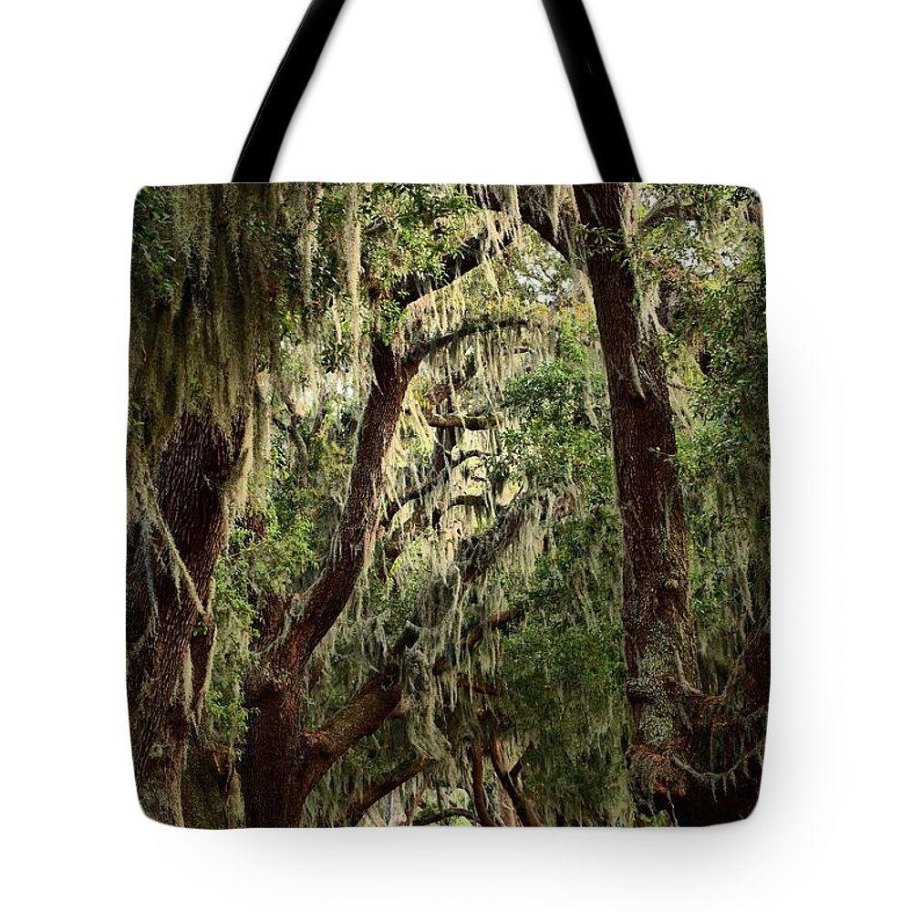 Avenue Of The Oaks Tote Bag featuring the photograph Hanging Moss And Giant Oaks by Adam Jewell