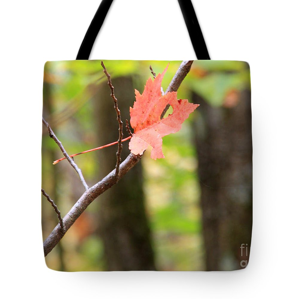Fall Color Tote Bag featuring the photograph Hanging On by Michael Mooney