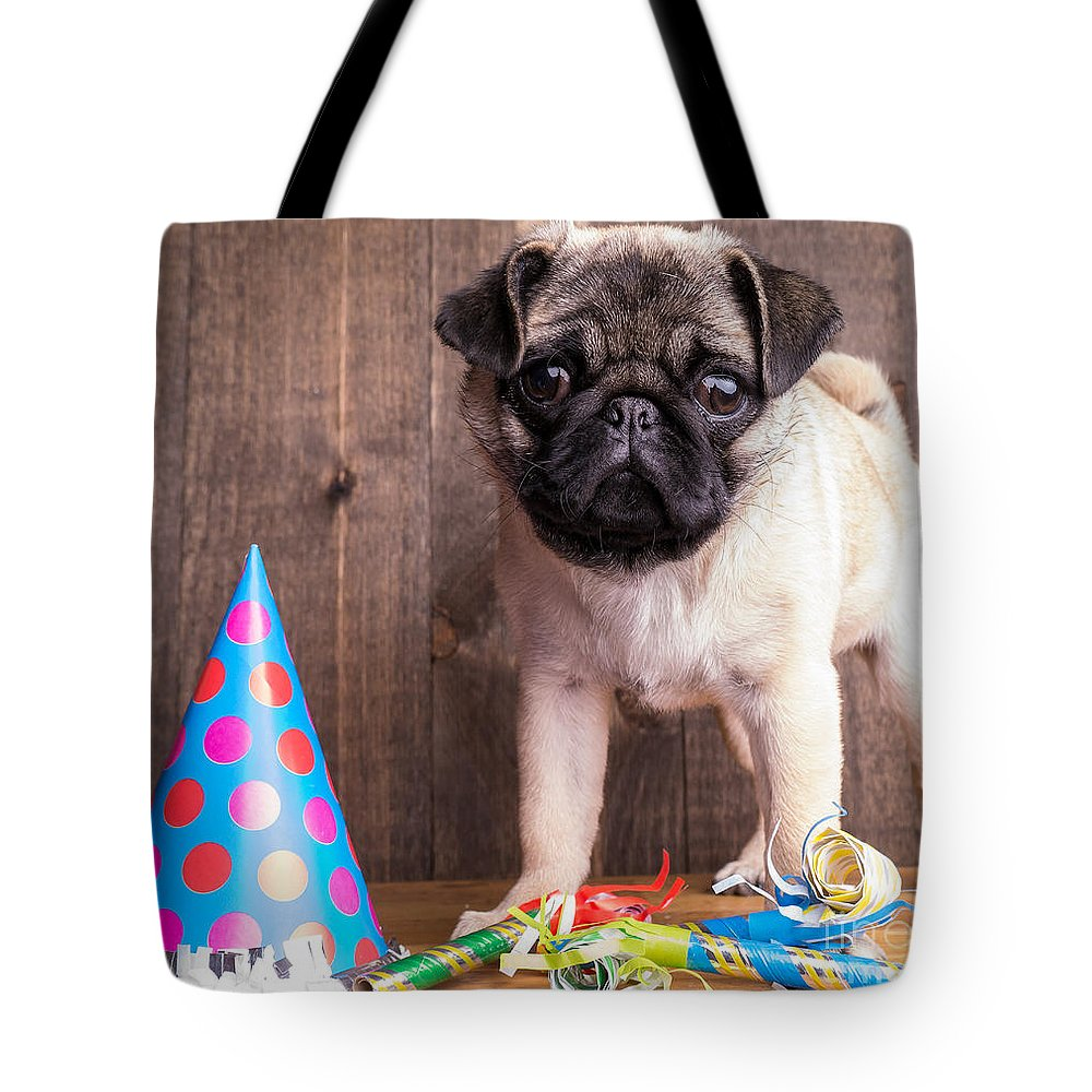 Dog Tote Bag featuring the photograph Happy Birthday Cute Pug Puppy by Edward Fielding