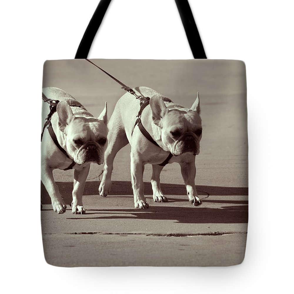 Dogs Tote Bag featuring the photograph Happy Dogs 14 by Xueling Zou
