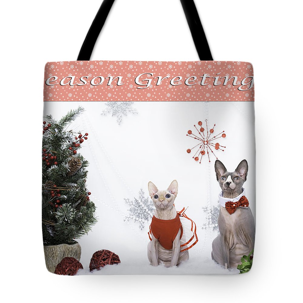 Xmas Card Tote Bag featuring the photograph Happy Holidays 105 by Zina Zinchik