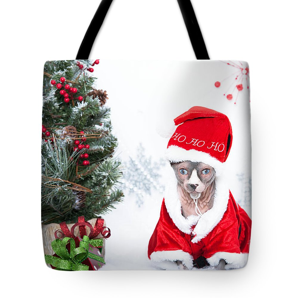 Canadian Sphynx Tote Bag featuring the photograph Xmas Holidays Greeting Card 108 by Zina Zinchik