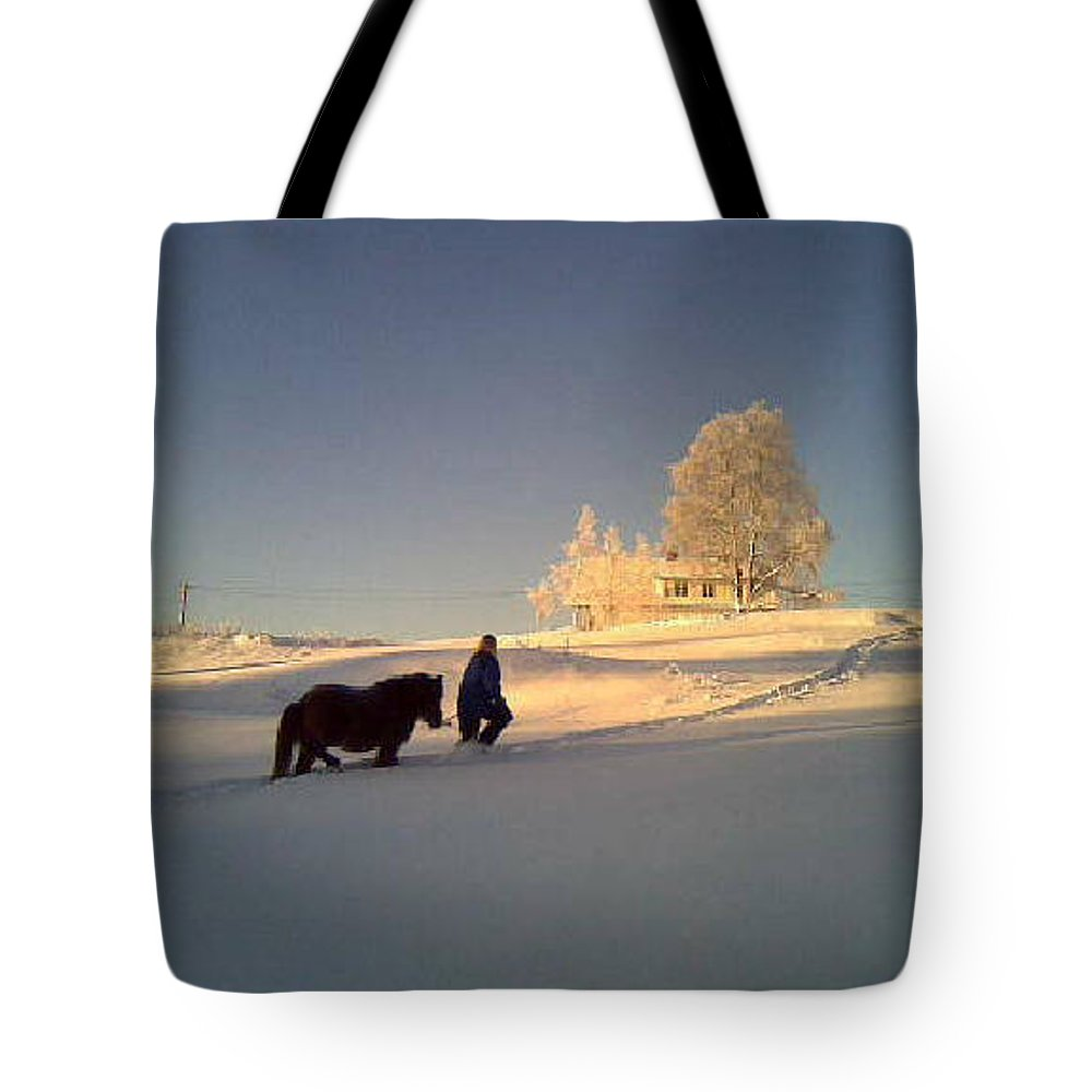 Winter Tote Bag featuring the photograph We Had Happy Holidays But They Were Cold by Hilde Widerberg