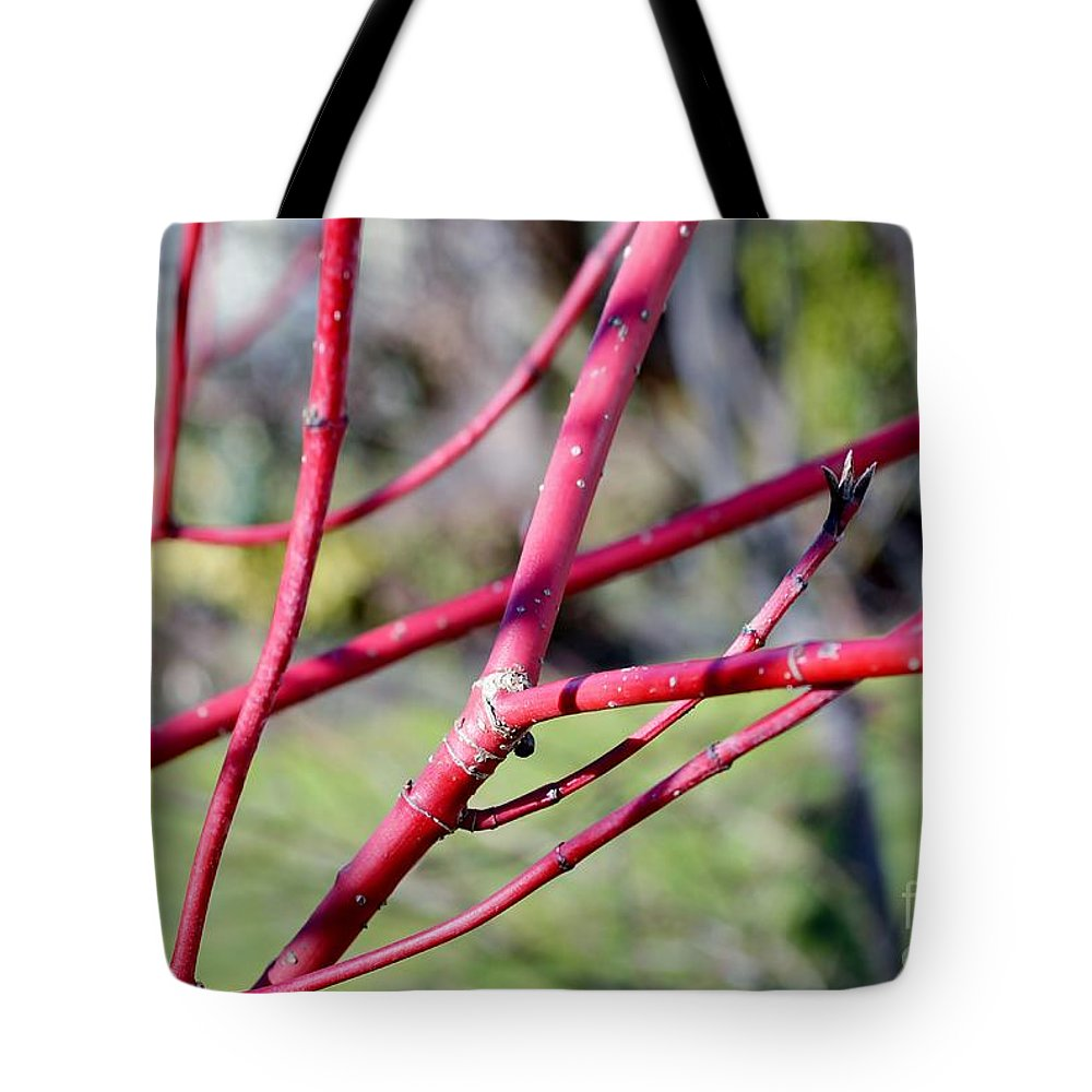 Tree Buds Tote Bag featuring the photograph Happy In The Sun by Felicia Tica