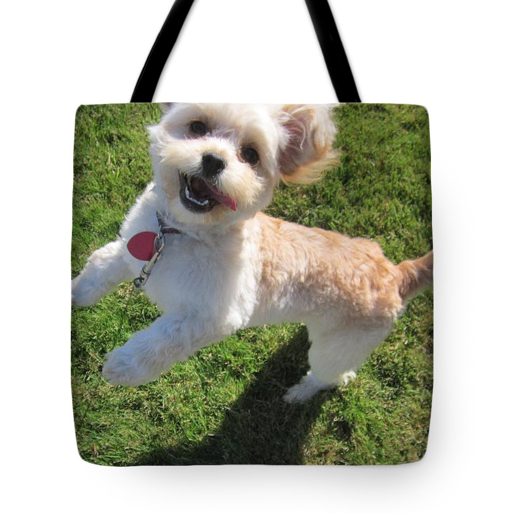 Happy Tote Bag featuring the photograph Happy by Kazumi Whitemoon