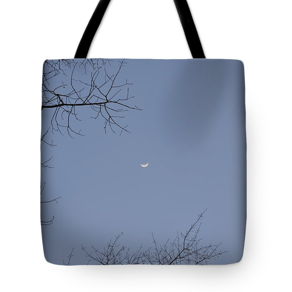 Moon Tote Bag featuring the photograph Happy Moon by Tara Potts