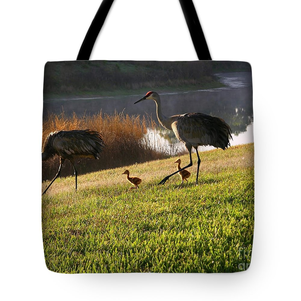 Sandhill Cranes Tote Bag featuring the photograph Happy Sandhill Crane Family - Original by Carol Groenen