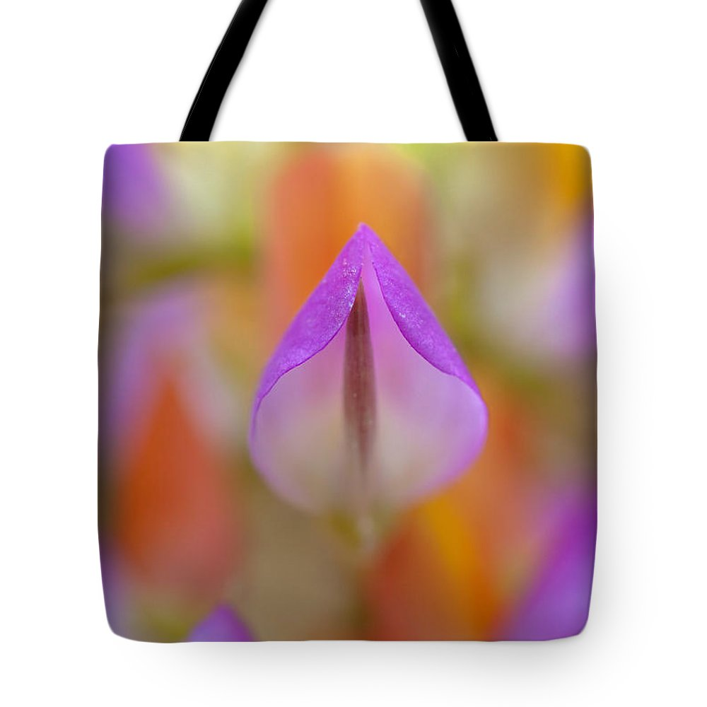 Flower Tote Bag featuring the photograph Harlequin Lupine by Alice Cahill
