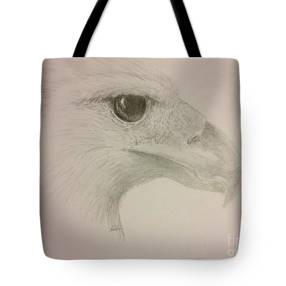 Harpy Eagle Tote Bag featuring the drawing Harpy Eagle Study by K Simmons Luna