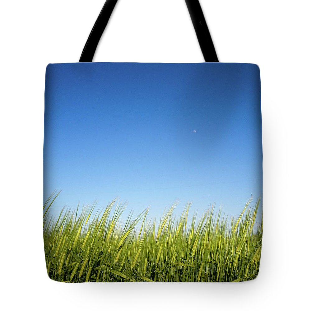 Tranquility Tote Bag featuring the photograph Harvest Moon by © Peter Lourenco