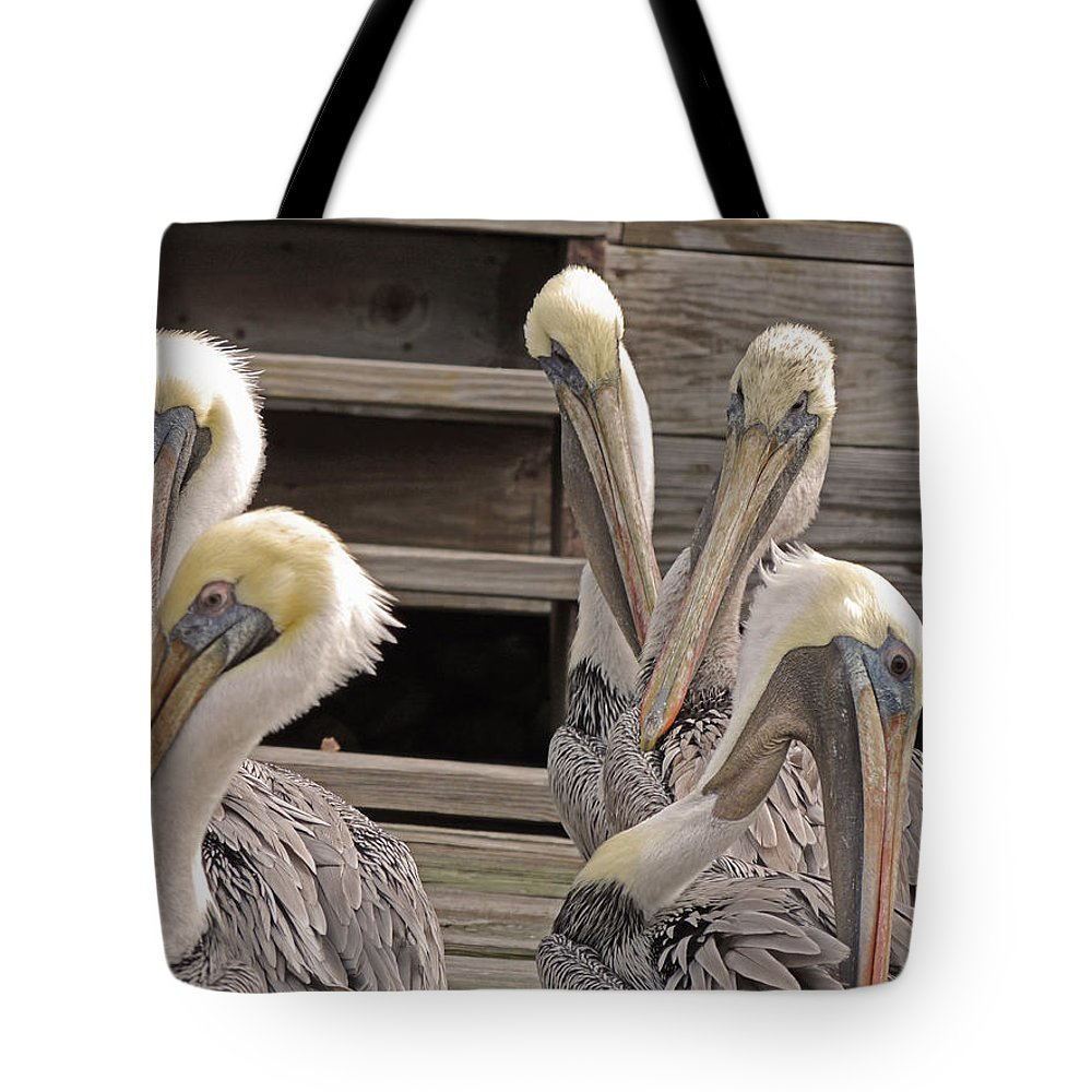 Pelicans Tote Bag featuring the photograph Having A Natter by Marilyn Holkham