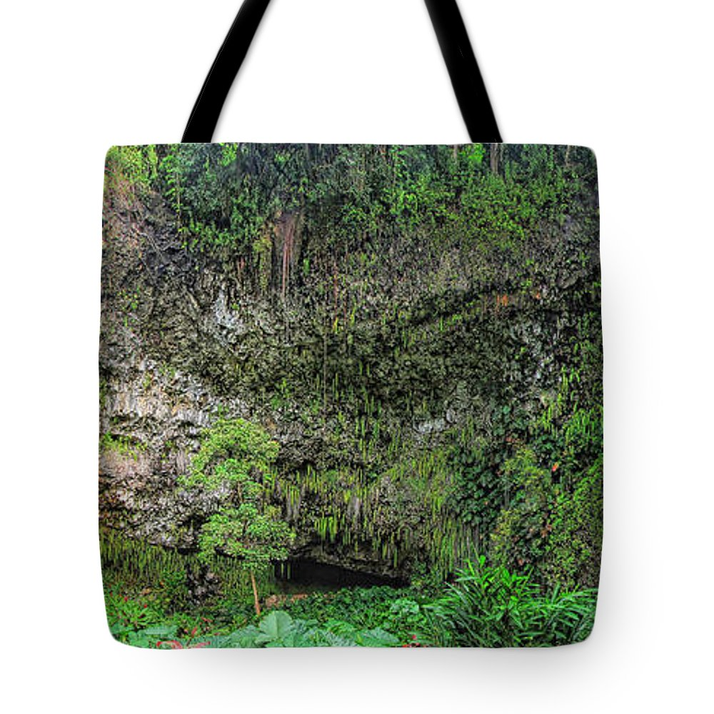 Fern Grotto Tote Bag featuring the photograph Hawaii Fern Grotto by C H Apperson