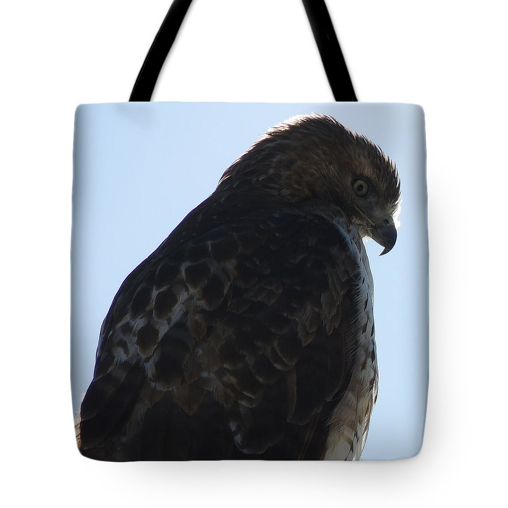 Red Tote Bag featuring the photograph Hawkish by Mim White