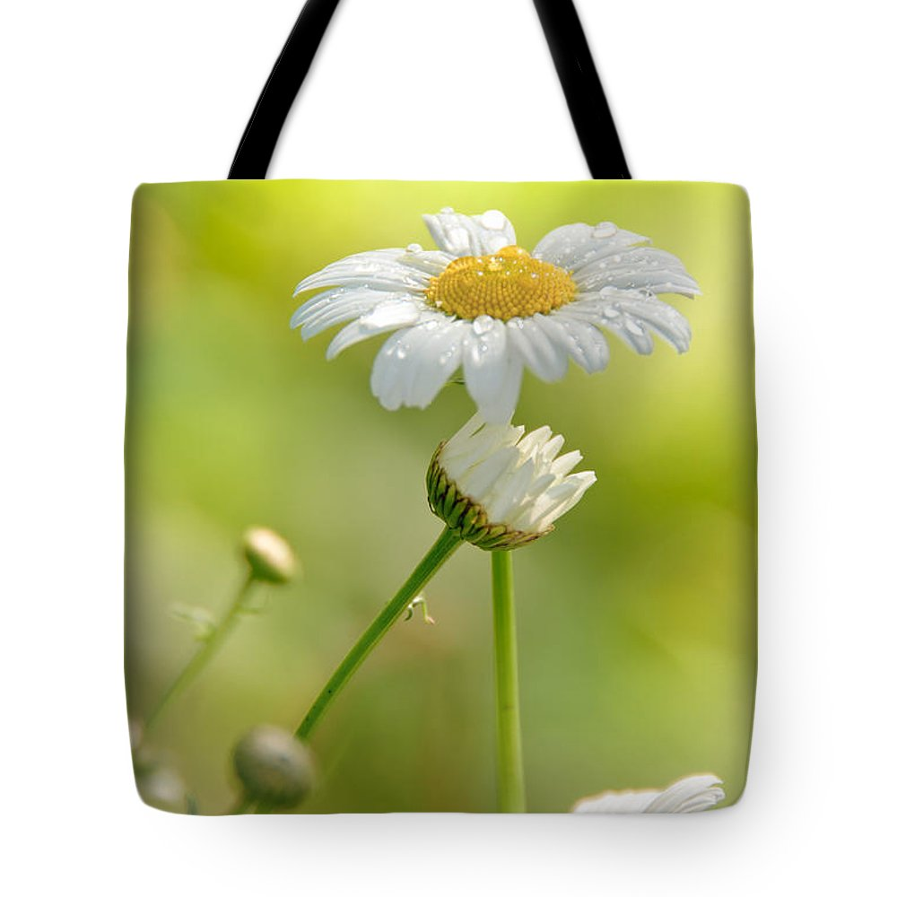 Daisy Tote Bag featuring the photograph He Loves Me by Cheryl Baxter