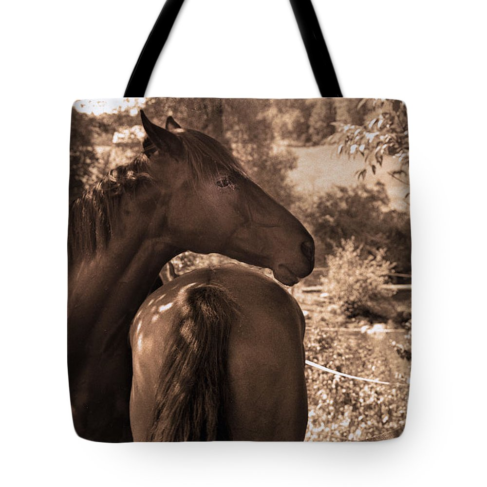 Horse Tote Bag featuring the photograph Head And Tail by Madeline Ellis