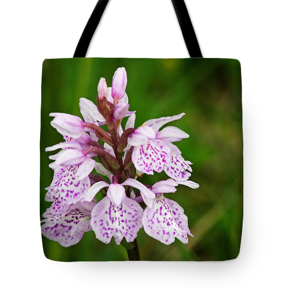 Orchid Tote Bag featuring the photograph Heath Spotted Orchid by Tony Murtagh