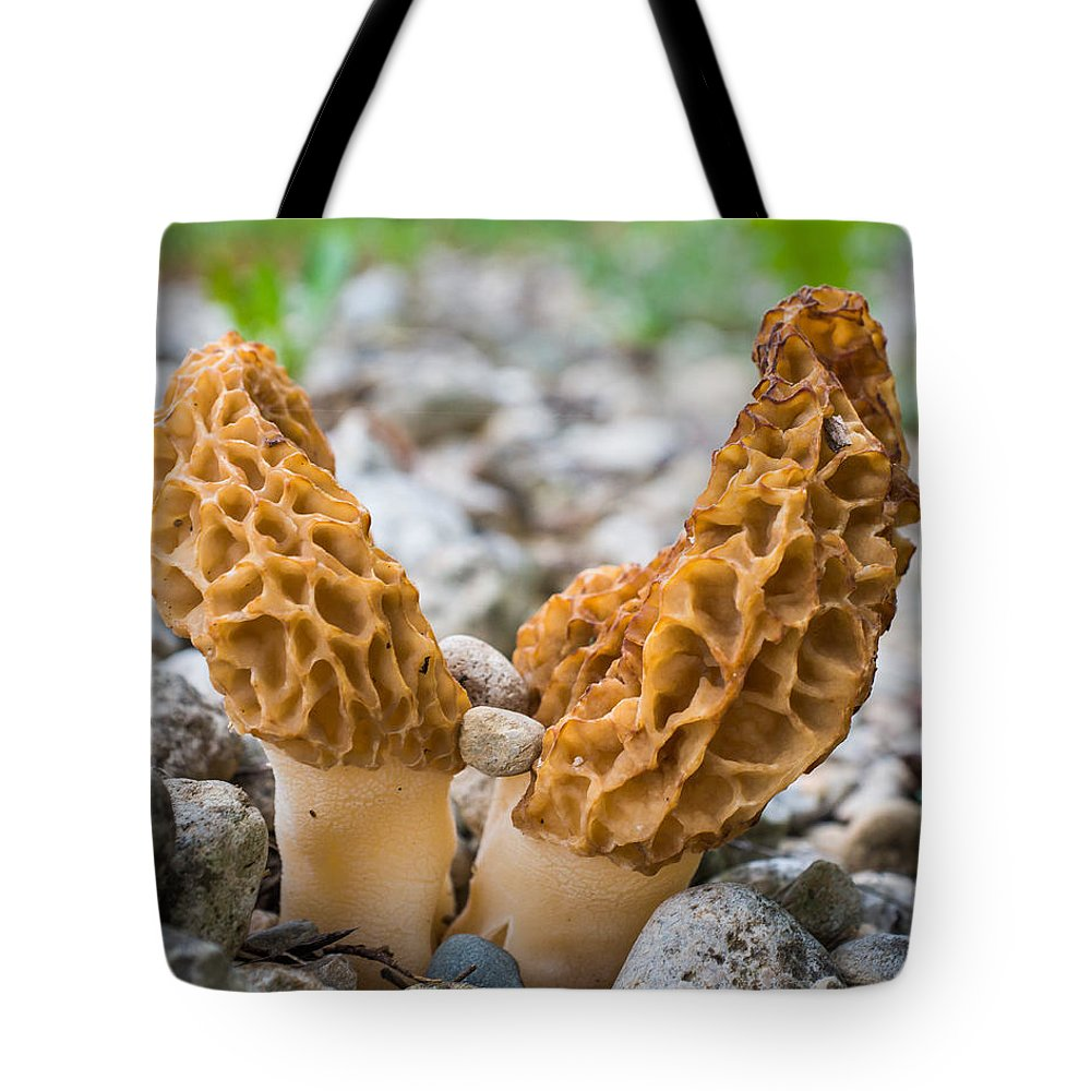 Bill Pevlor Tote Bag featuring the photograph Heavy Lifting Morels by Bill Pevlor