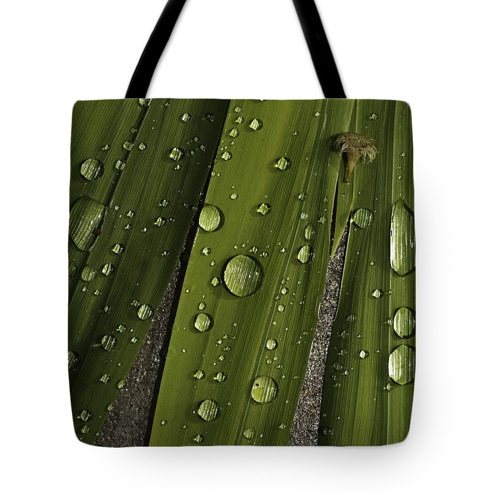 Rain Tote Bag featuring the photograph Heavy Rain by Angela Stanton
