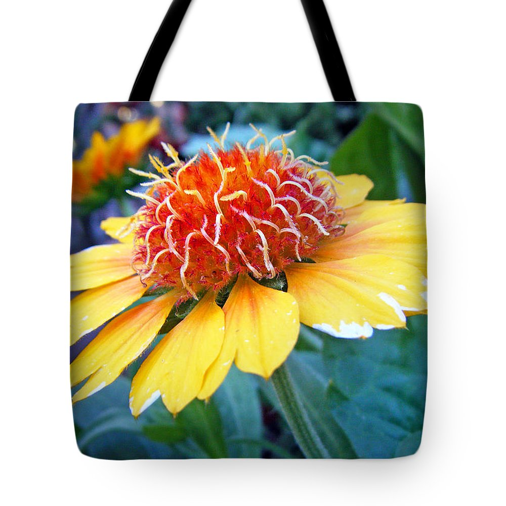 Duane Mccullough Tote Bag featuring the photograph Helenium Flowers 2 by Duane McCullough