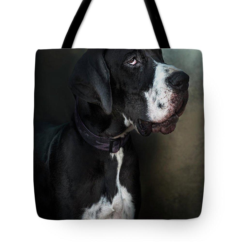 Pets Tote Bag featuring the photograph Helga by Silversaltphoto.j.senosiain