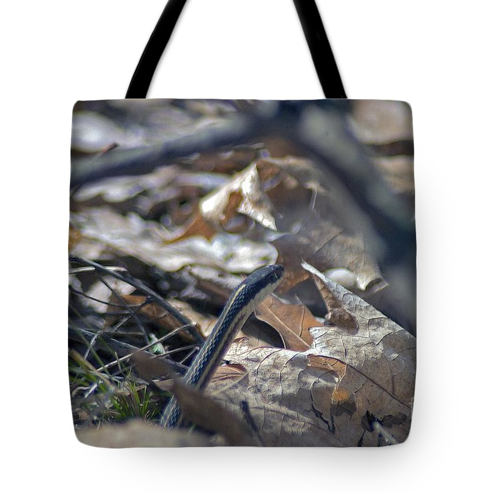 Forest Floor Tote Bag featuring the photograph Hello by Joseph Yarbrough