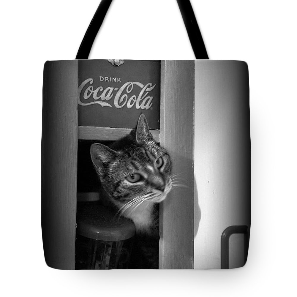 Cat Tote Bag featuring the photograph Hello Kitty by Laurie Perry