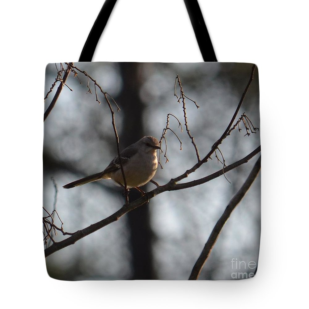 Hellooo Spring Tote Bag featuring the photograph Hellooo Spring by Maria Urso
