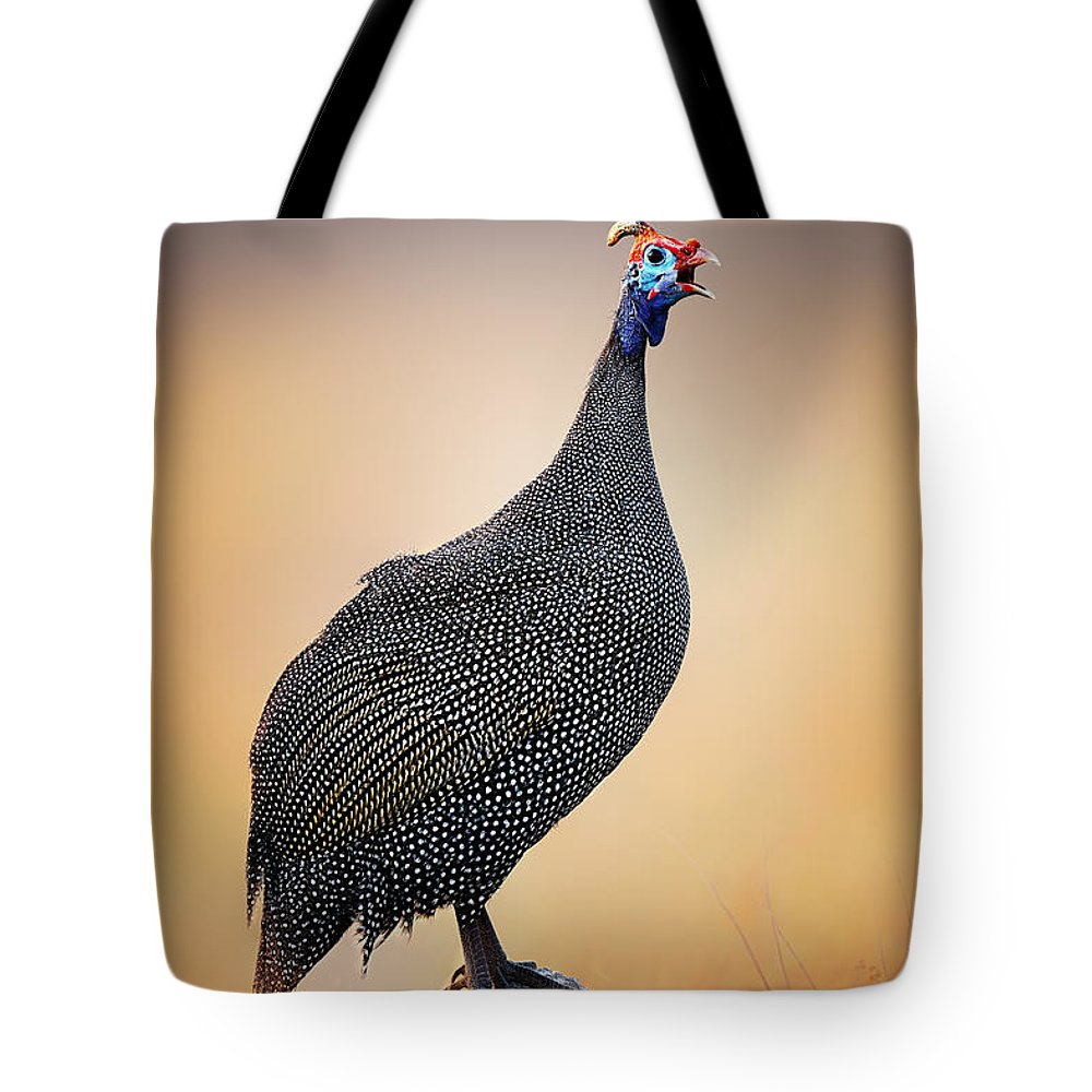 Helmeted Tote Bag featuring the photograph Helmeted Guinea-fowl Perched On A Rock by Johan Swanepoel